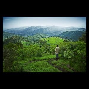 Kuni-Muktar Mountain Nyala Sanctuary